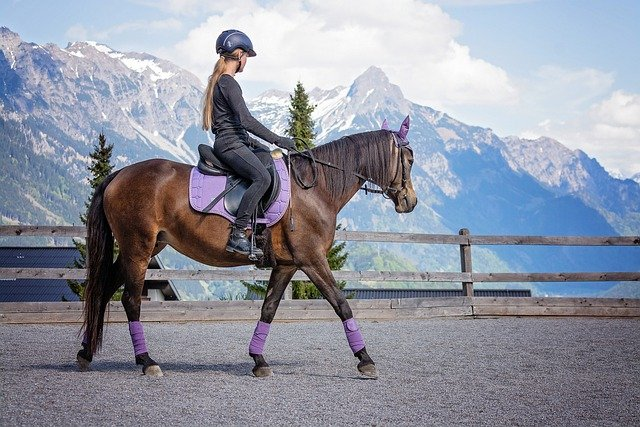 Horse Riding Vacation in France